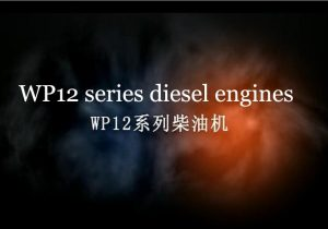 Weichai WP12 Series Diesel Engines Brief Introduction